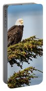 Surveying The Treeline Portable Battery Charger