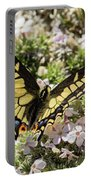 Swallowtail At Sand Wash Portable Battery Charger