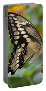 Swallowtail On A Lantana Portable Battery Charger