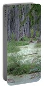 Swamp Garden At Magnolia Plantation And Gardens Portable Battery Charger