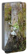 Swamp Monster Portable Battery Charger