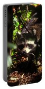 Swamp Raccoon Portable Battery Charger