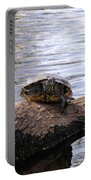 Swamp Turtle Portable Battery Charger