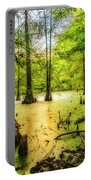 Swampland Dreams Portable Battery Charger