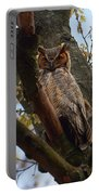 Swan Point Great Horned Owl Portable Battery Charger