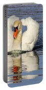 Swan Reflection Portable Battery Charger