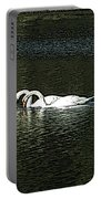 Swans Portable Battery Charger