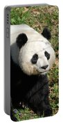Sweet Chinese Panda Bear Sitting Down In Grass Portable Battery Charger
