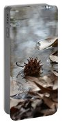 Sweet Gum Seed Pod In Mississippi Winter Portable Battery Charger