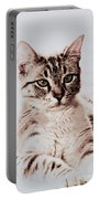 Sweet Jaspurr Portable Battery Charger