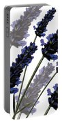 Sweet Lavender Portable Battery Charger