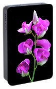 Sweet Pea Portable Battery Charger