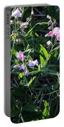 Sweet Pea In Tahoe Portable Battery Charger