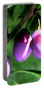 Sweet Ripe Blue Plum On A Branch Portable Battery Charger