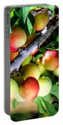 Sweet Ripe  Plum On A Branch Portable Battery Charger