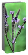 Sweet Vervain Portable Battery Charger