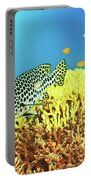 Sweetlips Portable Battery Charger