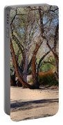 Sweetwater 6 Portable Battery Charger
