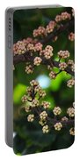 Swirl Of Beauty Portable Battery Charger