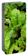 Swiss Chard In A Vegetable Garden 4 Portable Battery Charger