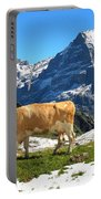 Swiss Scene Portable Battery Charger