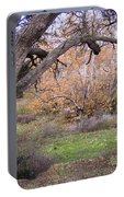 Sycamore Grove Fall Portable Battery Charger