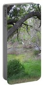 Sycamore Grove Portable Battery Charger