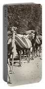 Syria: Caravan, C1900 Portable Battery Charger