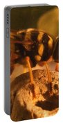 Syrphid Fly On Fossil Crinoid Portable Battery Charger