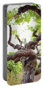 Tai Chi Vine Portable Battery Charger