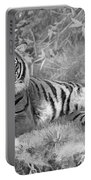 Takin It Easy Tiger Black And White Portable Battery Charger