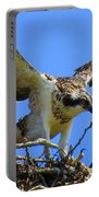 Taking Flight Portable Battery Charger