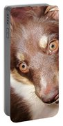 Talking Dog Portable Battery Charger