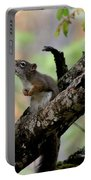 Talking Squirrel Portable Battery Charger