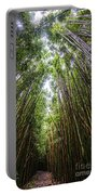 Tall Bamboo Portable Battery Charger