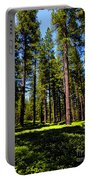 Tall Forest Portable Battery Charger