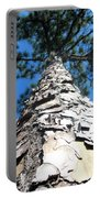 Tall Pine Tree In Summer Portable Battery Charger