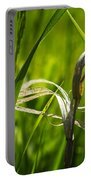 Tall Prairie Grass Close Up Portable Battery Charger