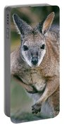 Tamma Wallaby Portable Battery Charger