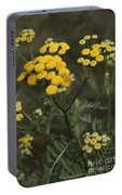 Tansy Blossoms Portable Battery Charger