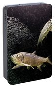 Tarpon And Silversides Portable Battery Charger