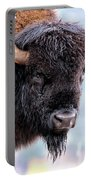 Tatanka Portrait Portable Battery Charger
