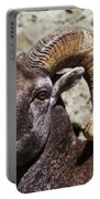 Taunting Bighorn Portable Battery Charger