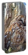 Tawny Owls Portable Battery Charger
