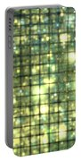 Teal Gold Cubes Portable Battery Charger