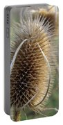 Teazle Portable Battery Charger