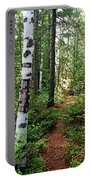 Temagami Island Forest I Portable Battery Charger