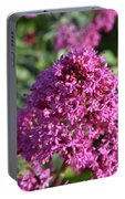 Terrific Cluster Of Blooming Pink Phlox Flowers Portable Battery Charger