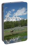 Teton Reflection With Buffalo Portable Battery Charger