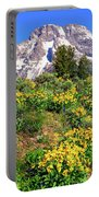 Teton Spring In The Valley Portable Battery Charger